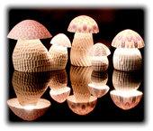 mushroom lump